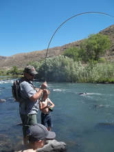 Oregon Fly Fishing